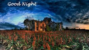Good Night wise with  Nature