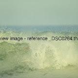 _DSC0264.thumb.jpg