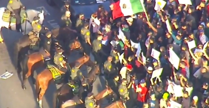 Media, leftist consultants link Latino protesters' violence to Trump's rhetoric