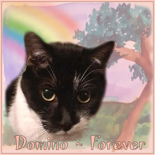 Domino OTRB by Ann