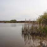 20140427_Fishing_Babyn_015.jpg