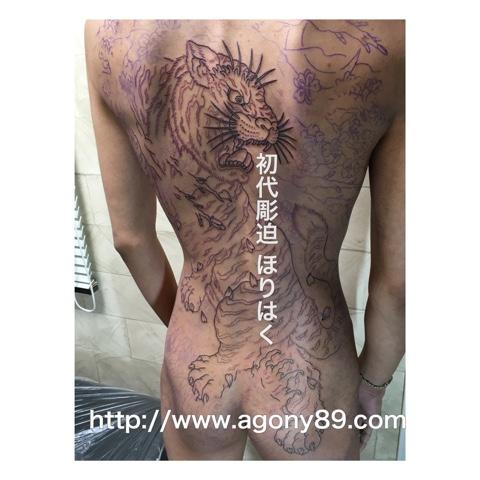刺青画像、刺青 虎、白虎 刺青、刺青 虎 画像、 刺青デザイン和彫り 虎、 白虎 刺青 デザイン 和彫り 画像、タトゥー 虎 画像、 タトゥー デザイン 虎 画像、和彫り、背中一面、虎、白虎、桜、桜木、岩、波、草、茂み、雲、霧、暈し、額彫り、亀甲彫り、刺青、タトゥー、刺青画像、タトゥー画像、刺青デザイン、刺青デザイン画像、刺青デザイン画像集、タトゥーデザイン、タトゥーデザイン画像、タトゥーデザイン 画像集、tattoo、tattoo画像。