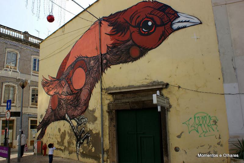 O Pássaro, Setúbal mais bonita