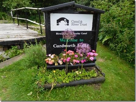 8 curdworth flowers