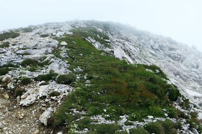 Gipfelhang zum Großer Daumen Hindelang Allgäu