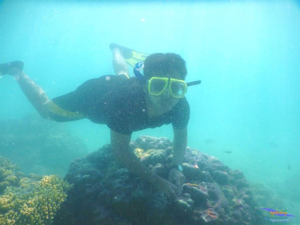 pulau pari, 23-24 mei 2015 18