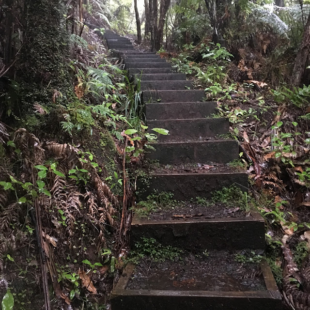 Technical steps in the Waitakere Ranges