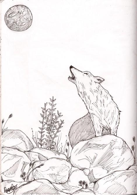 Dibujanta Nocturna Lobo Aullando