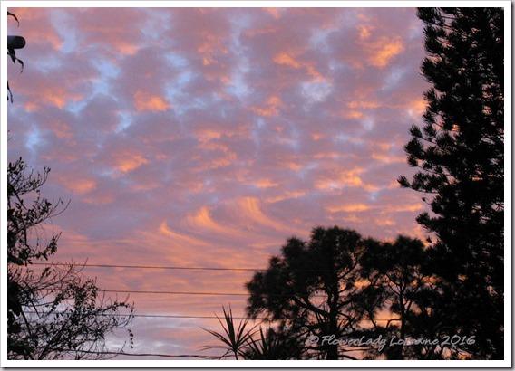 12-30-sunset-3