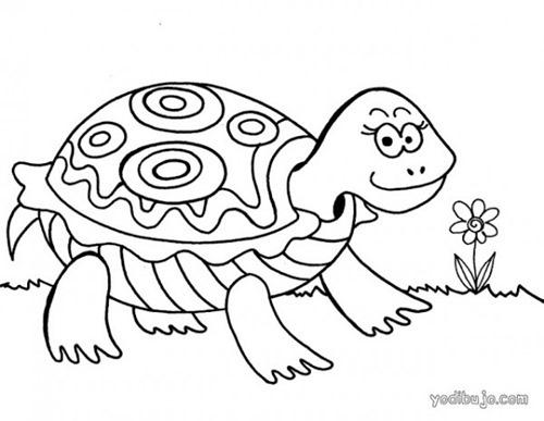 tortuga para colorear (2)