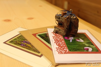 Carving and cards