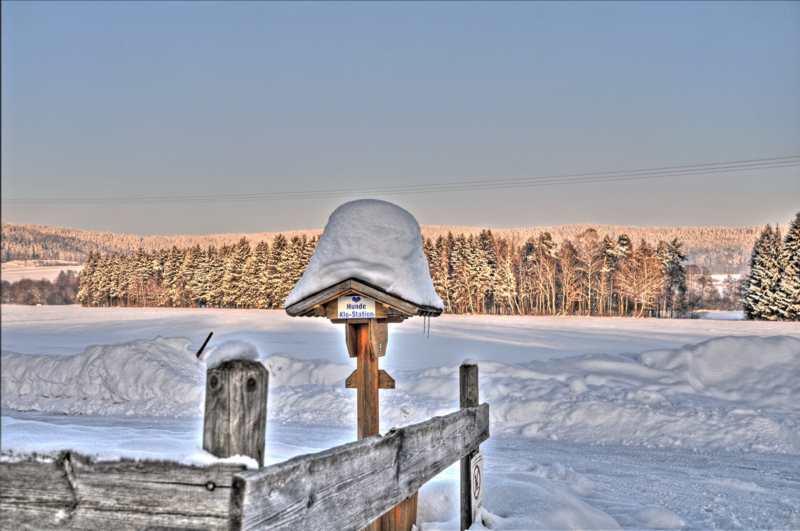 20110131 Winterliche Impressionen - Winter08.jpg