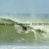 _DSC8879.thumb.jpg