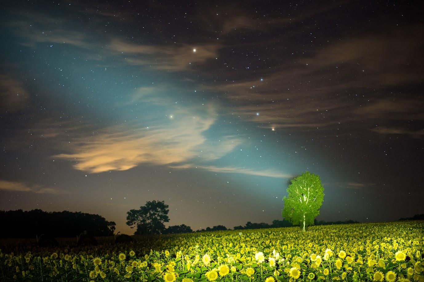 一億光年の星の光
