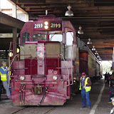 03-10-15 Fort Worth Stock Yards - _IMG0847.JPG