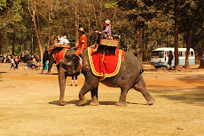 Elephant rides for sale around Angkor Thom- $20 just to get up the hill! Yeah, we'll have to wait on that:)