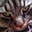 Michelangelo Bottura's profile photo