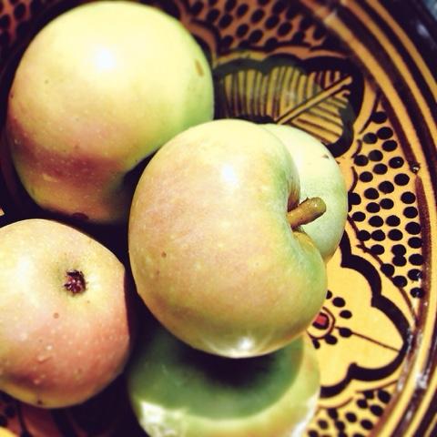 apple, apple cider vinegar, apple recipes, autumn, carrot, curry, turmeric, coriander, garlic, ginger, recipes, seasonal recipes, garam masala, chutney, preserves, relishes, preserving,