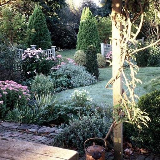 Mary's garden in July.