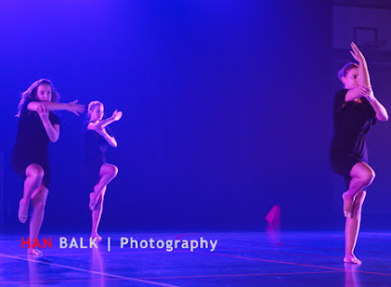 Han Balk Voorster Dansdag 2016-4652.jpg