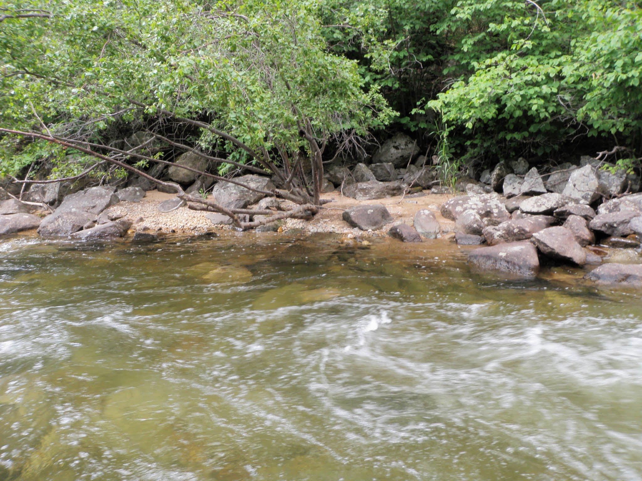 Boulder creek 07 29 2016 dave weller 39 s fly fishing blog for Boulder creek fishing