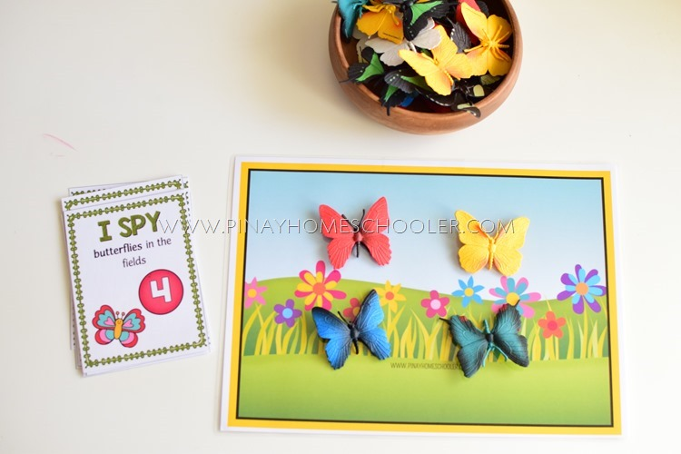 Butterfly I Spy Cards