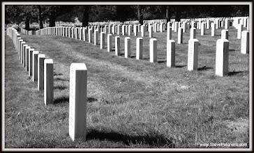 Photo: 091 Arlington Cemetery