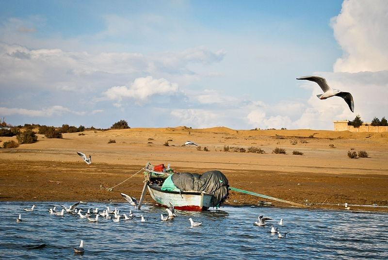 wadi-el-rayan-lake2