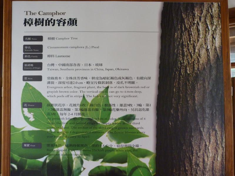 TAIWAN Chia yi, Taichung et quelque part ? au  au sud de Taipei - P1000365.JPG