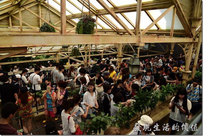 日本大阪-環球影城。天啊!這排隊的人龍可不是一般的短。