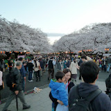 2014 Japan - Dag 1 - mike-P1050478-0014.JPG