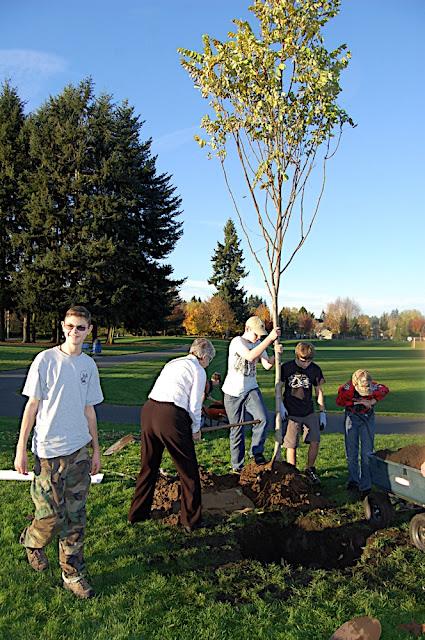 Tree Planting November 2010 - DSC_4536.JPG