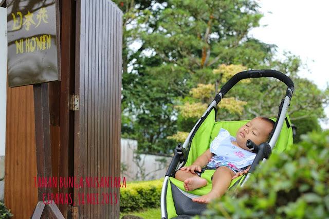 Penginapan Villa Taman Bunga Nusantara