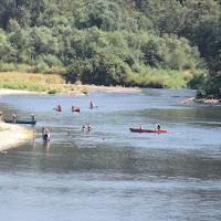 Skookumchuck River 2012 - DSCF1833.JPG
