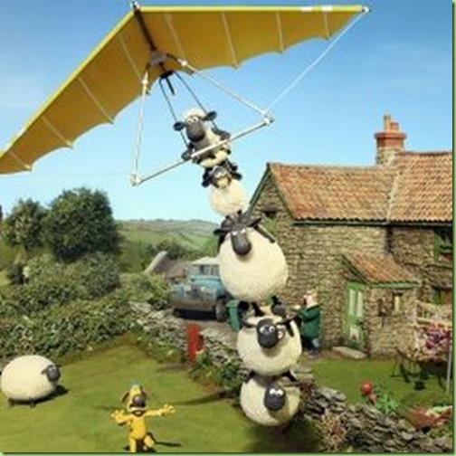sheep fly