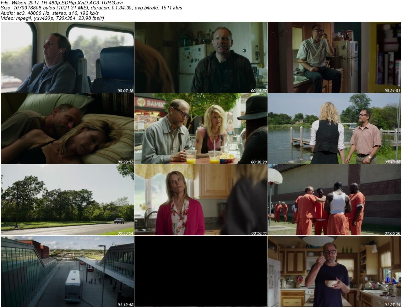 Wilson 2017 - 1080p 720p 480p - Türkçe Dublaj Tek Link indir