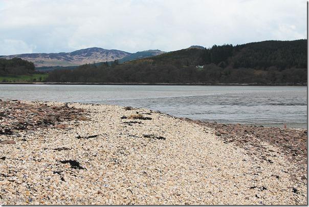 12-shell-beach