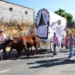 CaminandoalRocio2011_216.JPG