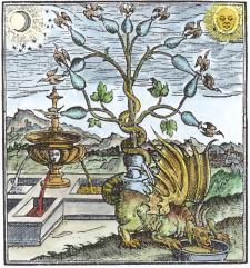 Engraving 3 From C Gesner The Practice Of The New And Old Physicke 1599, Alchemical And Hermetic Emblems 2