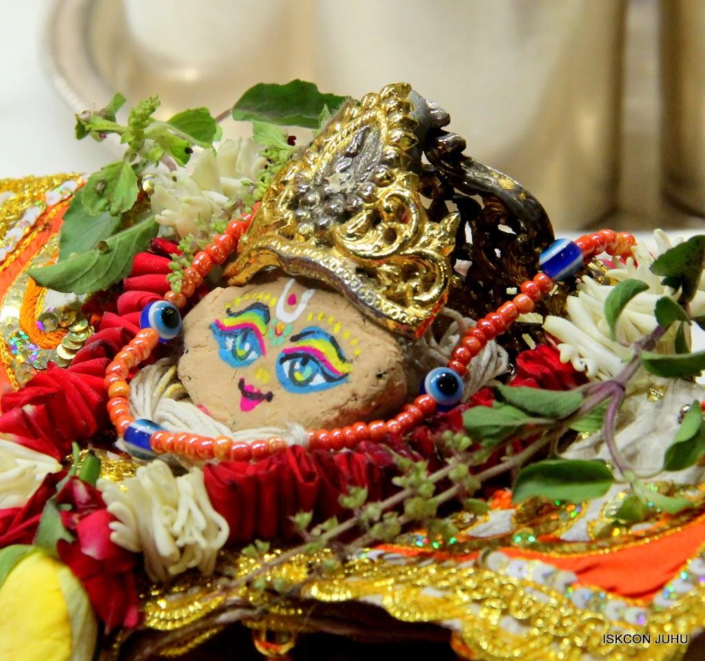 ISKCON Juhu Chandan yatara Deity Darshan on 9th May 2016 (28)