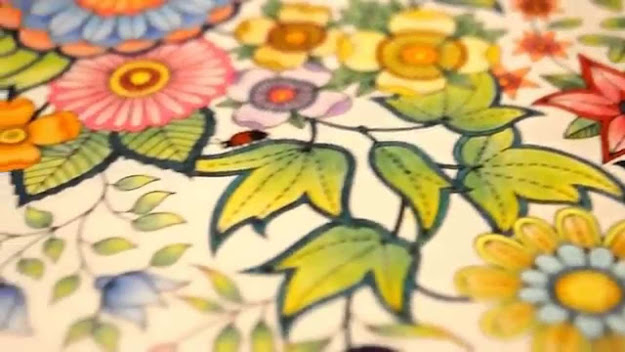 Secret Garden Coloring Book  My Leaves And Flowers  Jardim Secreto   Youtube
