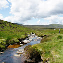 wicklow mountains.jpg