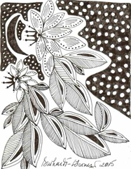 481 Zentangle Night