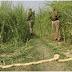 No Breakthrough Yet In Murder Of 2 Minor Dalit Girls, 3rd Still Critical