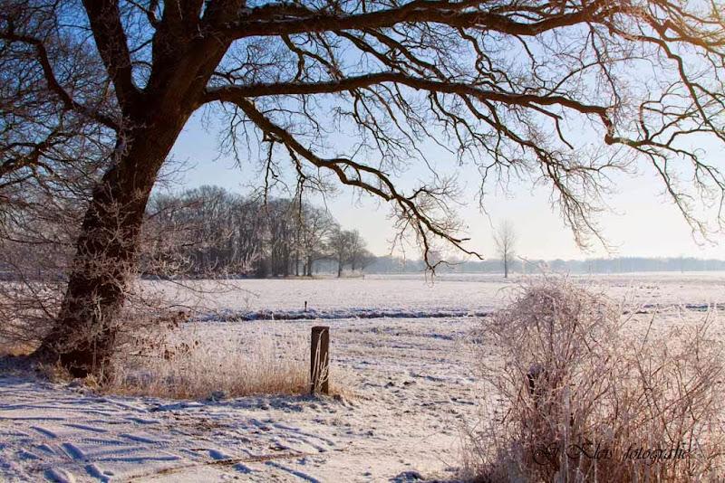 Winter - Winter-021.jpg