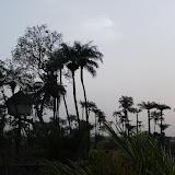 Sénégal - Guinée Bissau