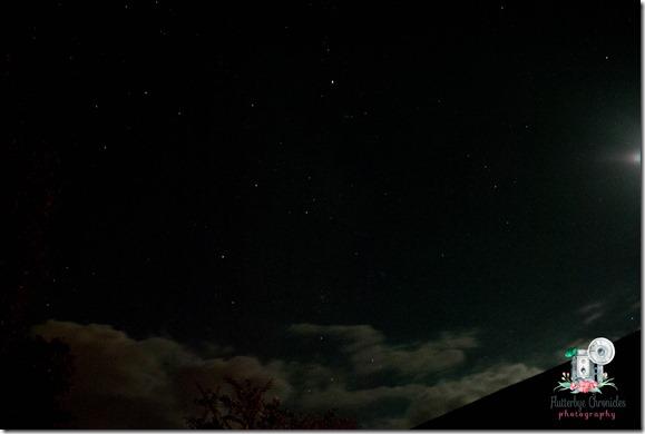 WW October 24th night sky (© Jenny @ Flutterbye Chronicles)