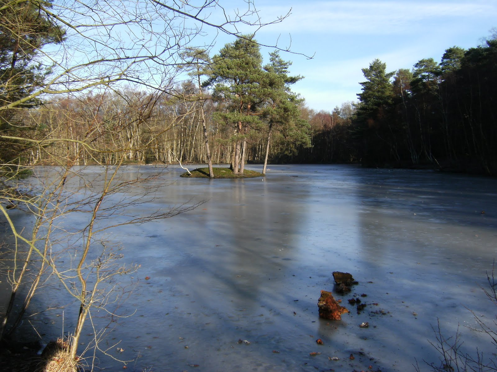2009 12280012 Heath Pond in winter