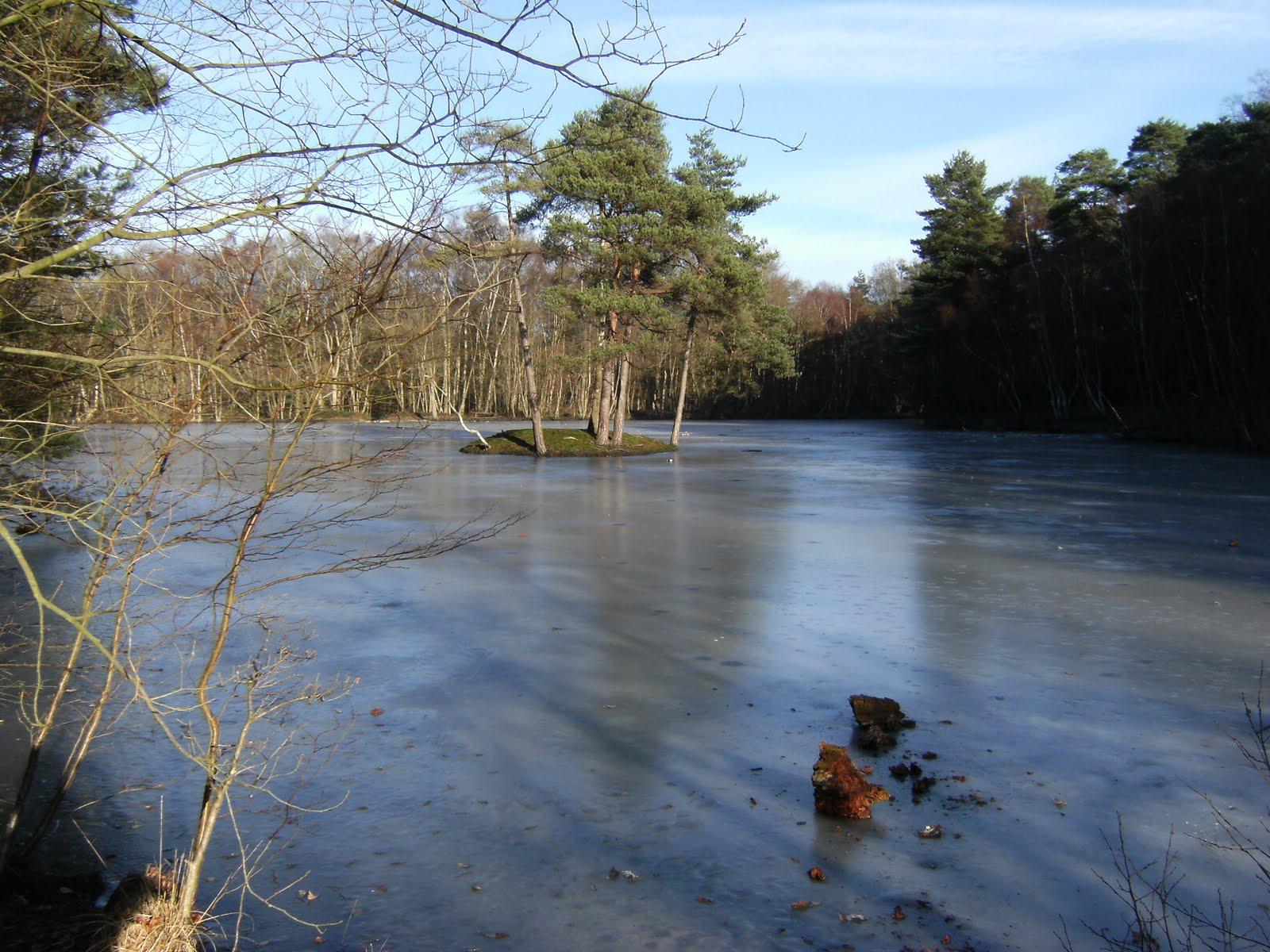 2009 12280012 Heath Pond in winter