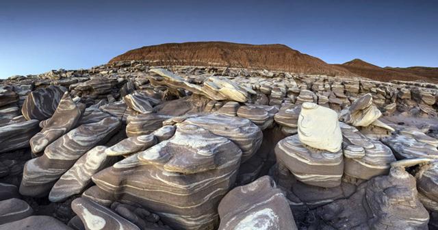 Petrified Forest National Park in Arizona. Photo: Andrew Kearns / NPS